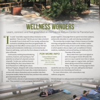 Wellness Wonders